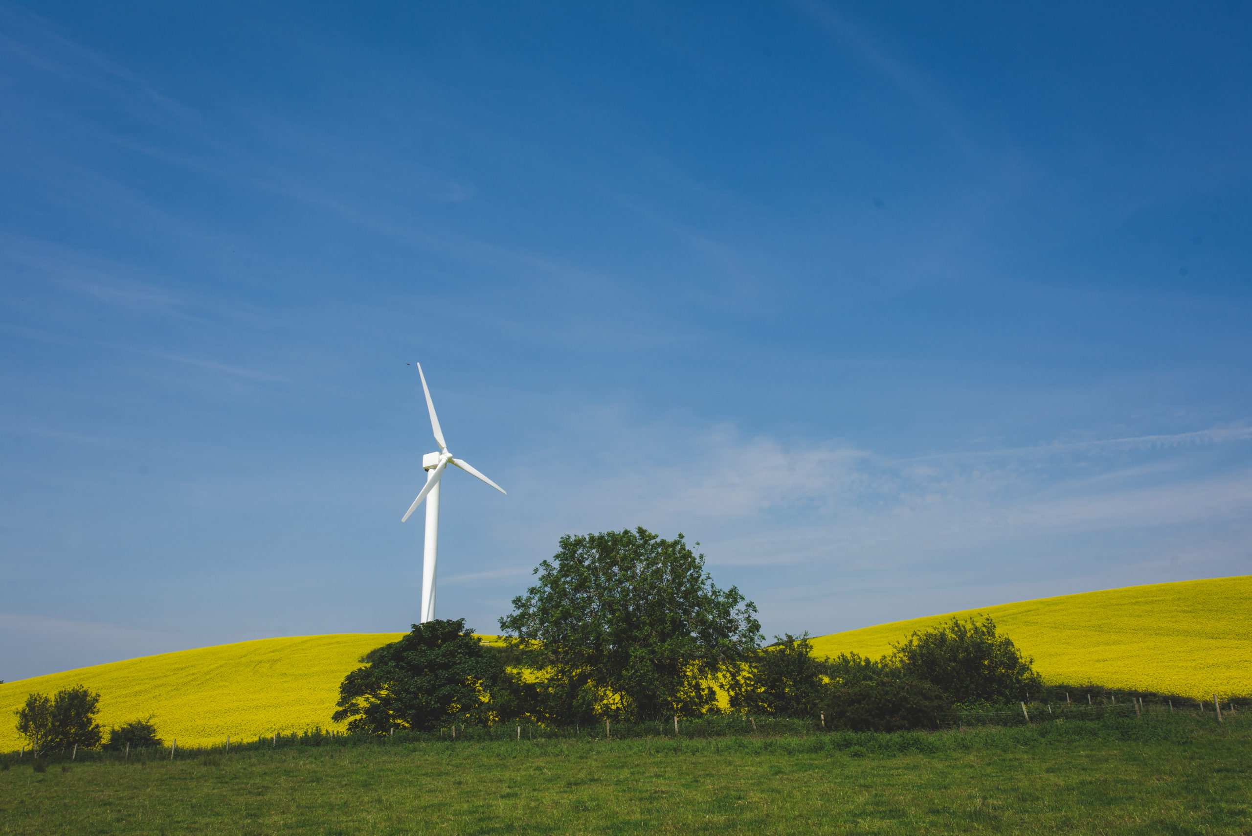How 2020 exposed the desperate need to adopt renewable energy on an industry-wide scale